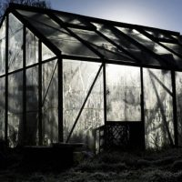 The Greenhouse, 2007, from the series, In The Shadow of Things