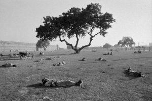 © Ferdinando Scianna, Nuova Delhi, 1972